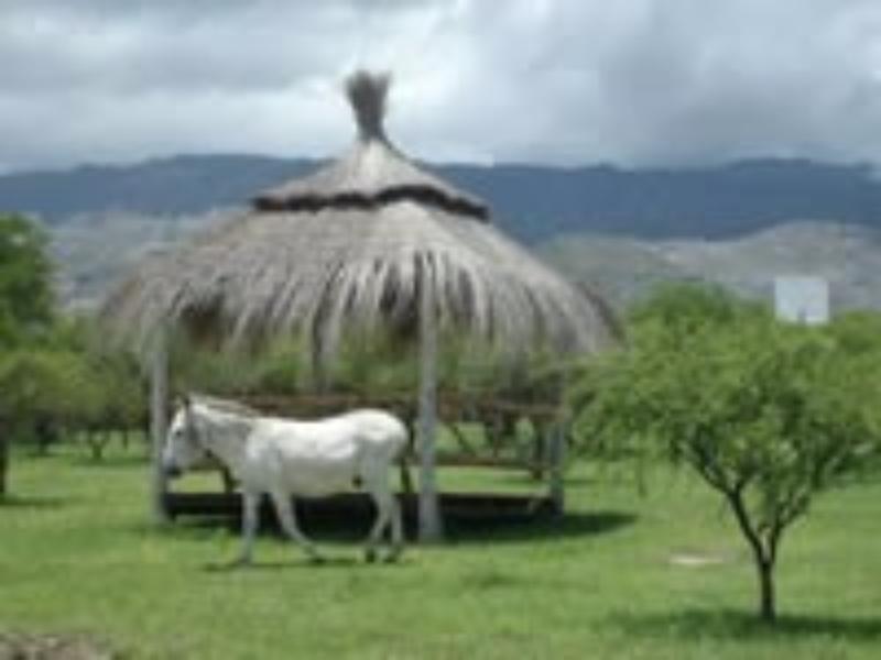 La Soñada Cabañas